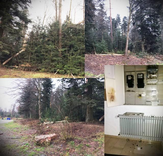 2016-04-06_tsv_blitzeinschlag_collage