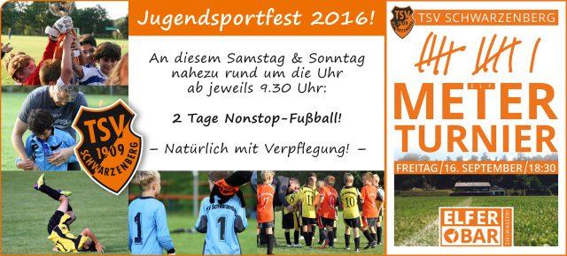 2016-09-12_tsv_jugendsportfest2016-und-elferturnier